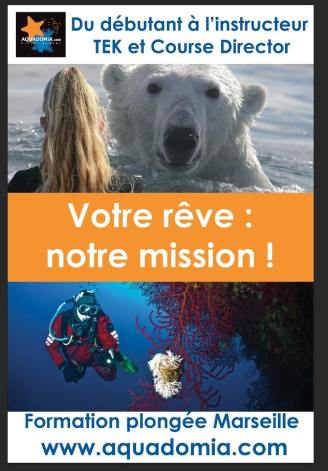 stephanie koca, ice diving, diving in french, evo 2 tignes, evolution 2, plongee sous glace montriond, aquadomia, under the ice