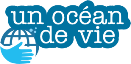stephanie koca, koca, un océan de vie, association, rené heuzey, protection de l'environnement, marseille